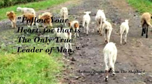Shepherd quotation