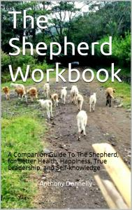 Shepherd Workbook cover