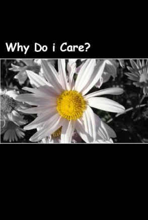 Why Do i Care COVER (2)